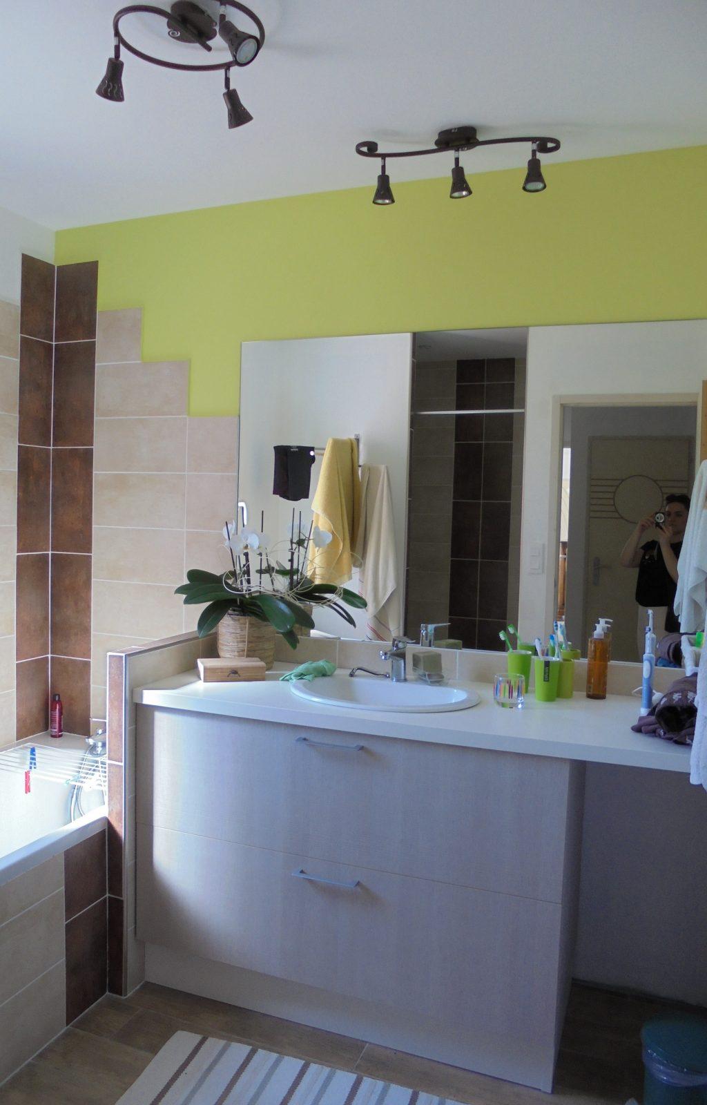 atelier_construction_maitre_oeuvre_bourg_maison_neuf_salle_bain_chocolat_vert